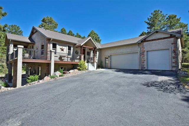 669 Winding Hills Road, Monument, CO 80132 (#5880616) :: The DeGrood Team