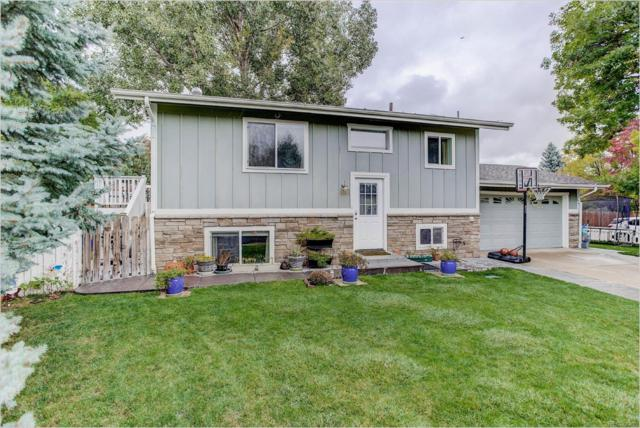 1085 Malory Street, Lafayette, CO 80026 (MLS #5880732) :: 8z Real Estate