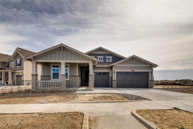 8846 S Yakima Court, Aurora, CO 80016 (#5881125) :: Structure CO Group