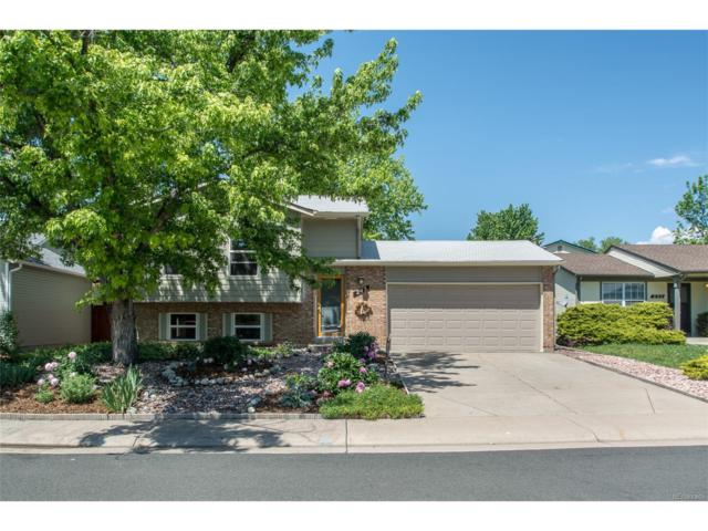 245 Dahlia Drive, Louisville, CO 80027 (MLS #5881954) :: 8z Real Estate