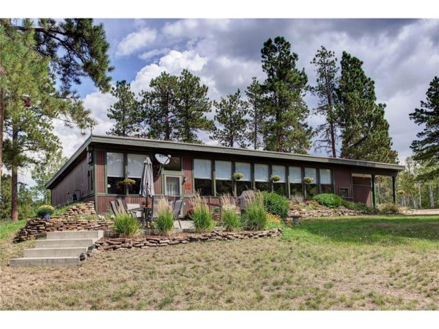 9741 Hilldale Drive, Morrison, CO 80465 (#5882835) :: The Sold By Simmons Team