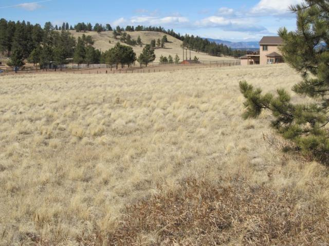 507 Duesouth Road, Florissant, CO 80816 (MLS #5890936) :: 8z Real Estate