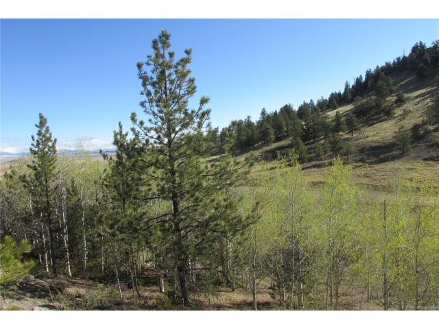 2667 Ranch Road, Hartsel, CO 80449 (#5891751) :: Wisdom Real Estate
