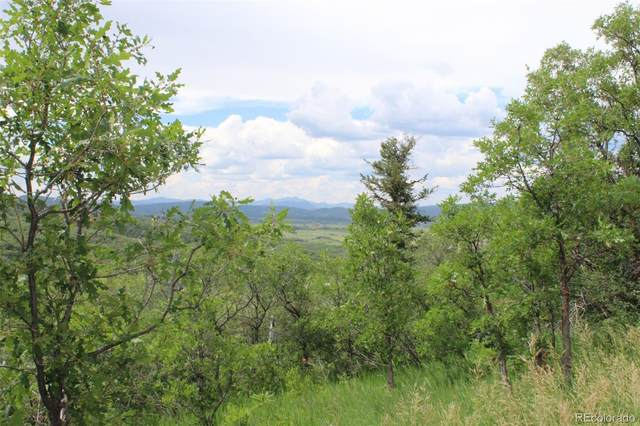 26730 County Road 14, Oak Creek, CO 80467 (MLS #5893499) :: 8z Real Estate