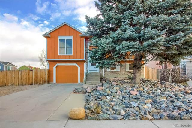 10222 Robb Street, Westminster, CO 80021 (#5893878) :: HomeSmart