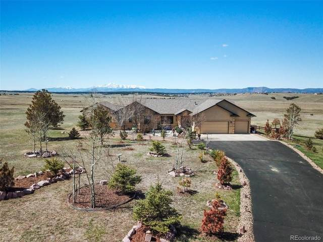 20050 Bright Wing Trail, Colorado Springs, CO 80908 (MLS #5900434) :: 8z Real Estate