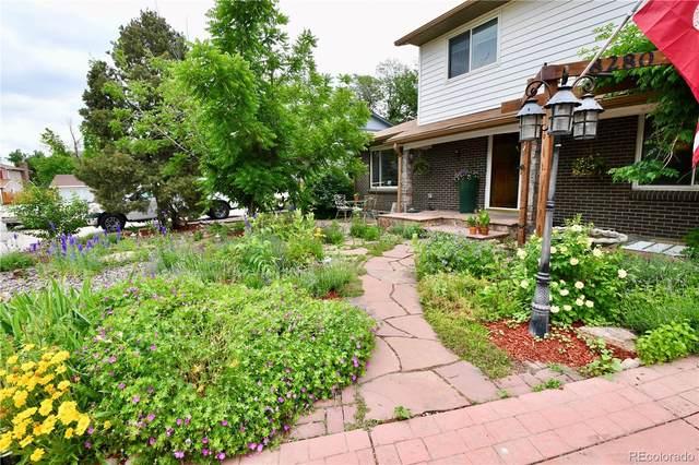 8280 Lamar Place, Arvada, CO 80003 (#5902418) :: Stephanie Fryncko | Keller Williams Integrity