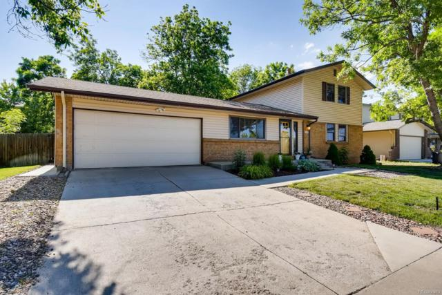 1519 S Holland Court, Lakewood, CO 80232 (#5902621) :: The Heyl Group at Keller Williams