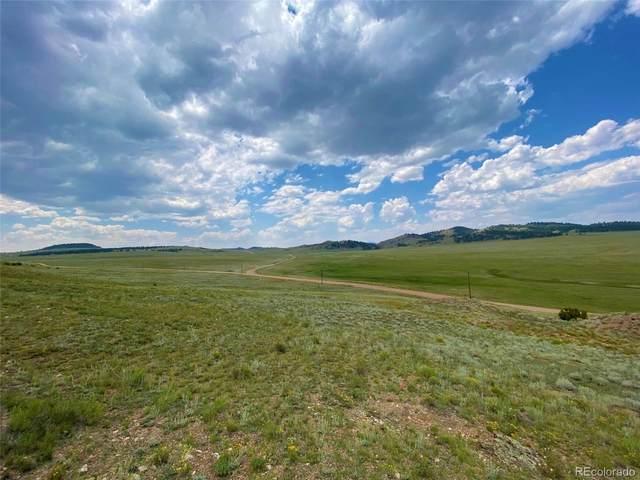1084 Co Road 53, Hartsel, CO 80449 (MLS #5903839) :: Bliss Realty Group