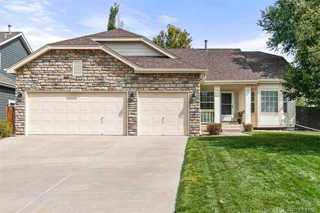 12452 S Arcaro Creek Court, Parker, CO 80134 (#5904297) :: The Margolis Team