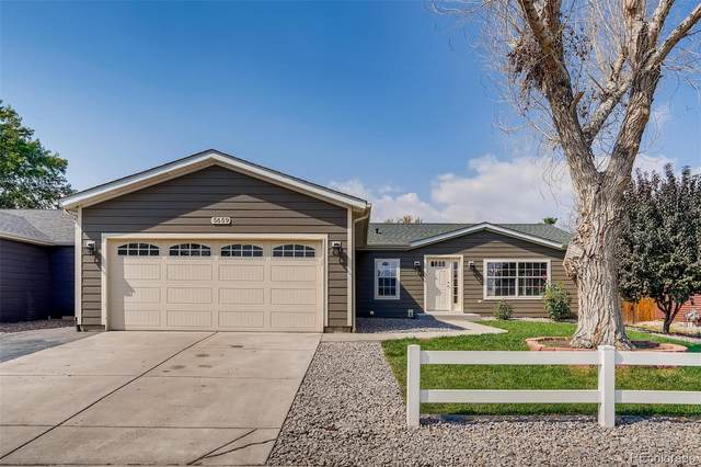5659 Alcott Street, Denver, CO 80221 (#5904666) :: The Scott Futa Home Team