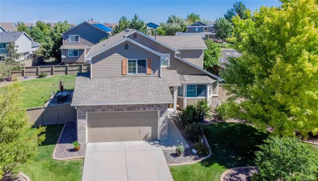 6059 Randolph Avenue, Castle Rock, CO 80104 (#5904881) :: The City and Mountains Group