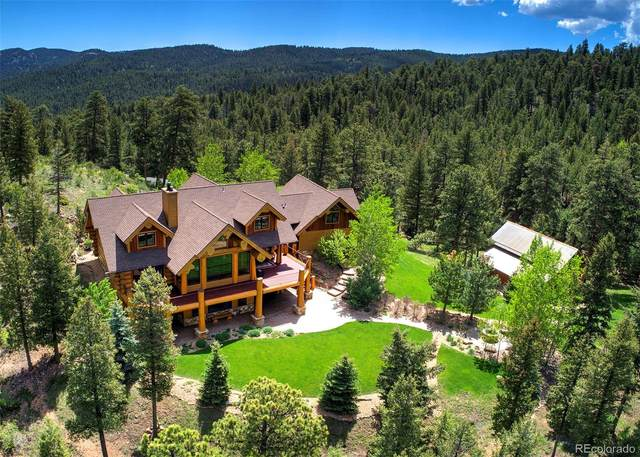 451 Bear Meadow Trail, Evergreen, CO 80439 (#5906682) :: Finch & Gable Real Estate Co.