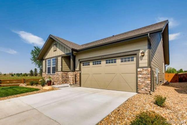 6727 Pinery Villa Place, Parker, CO 80134 (#5907079) :: Briggs American Properties