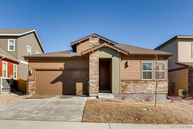 4008 Ghost Dance Drive, Castle Rock, CO 80108 (#5909177) :: The Griffith Home Team