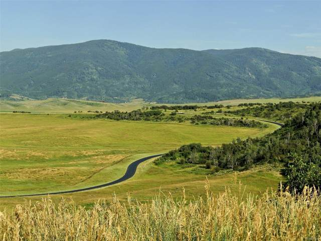 30715 Marshall Ridge Road, Steamboat Springs, CO 80487 (#5911104) :: Portenga Properties - LIV Sotheby's International Realty