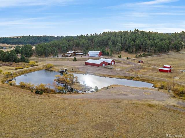 14535 S East Cherry Creek Road, Larkspur, CO 80118 (MLS #5911497) :: 8z Real Estate