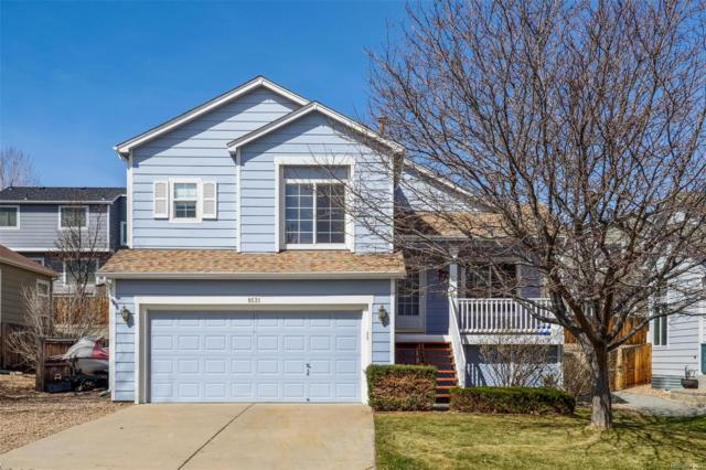 8531 Sweet Clover Way, Parker, CO 80134 (#5912475) :: The DeGrood Team