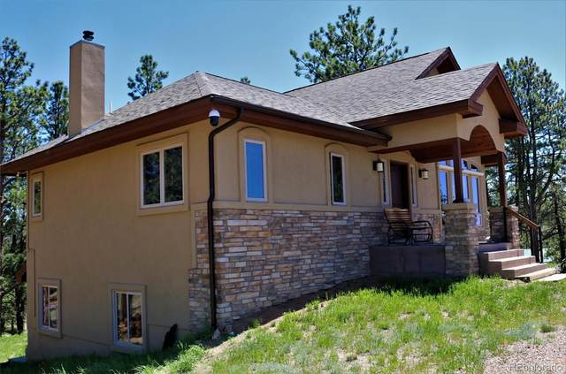 6627 County Road 100, Florissant, CO 80816 (#5925422) :: The Artisan Group at Keller Williams Premier Realty