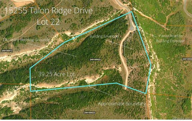 15255 Talon Ridge Drive, Hayden, CO 81639 (#5926139) :: The Gilbert Group