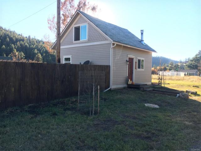 16685 County Road 126, Pine, CO 80470 (#5929107) :: 5281 Exclusive Homes Realty