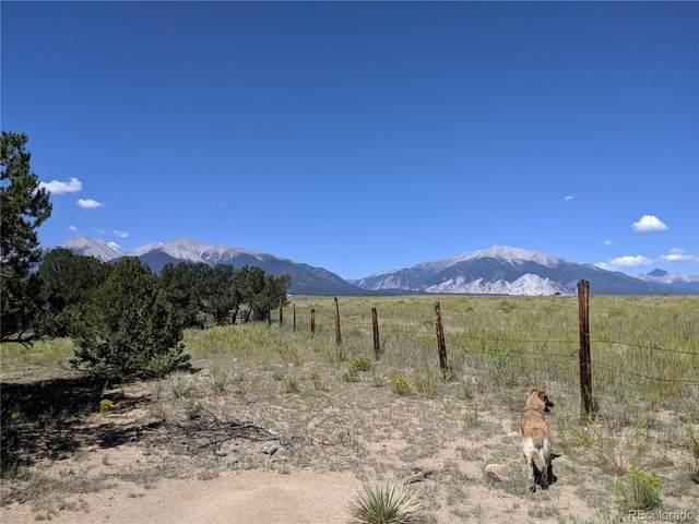 10392 Rawhide Creek Road, Nathrop, CO 81236 (#5929169) :: The Colorado Foothills Team | Berkshire Hathaway Elevated Living Real Estate