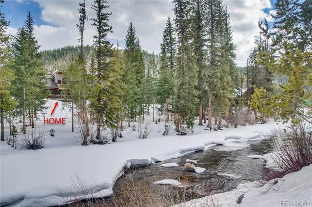 29090 River Drive, Clark, CO 80428 (#5933719) :: The Dixon Group