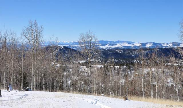 287 Andes Terrace, Cripple Creek, CO 80813 (#5936271) :: iHomes Colorado