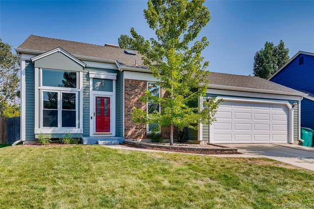 10380 Routt Street, Westminster, CO 80021 (#5936914) :: The DeGrood Team