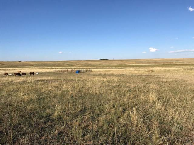 12155 Oil Well Road, Calhan, CO 80808 (#5937334) :: The DeGrood Team