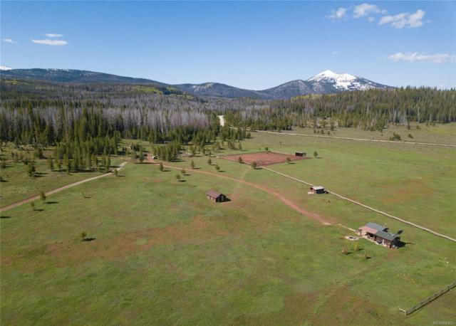 29190 Forest Service Road 500, Clark, CO 80428 (#5939375) :: Arnie Stein Team | RE/MAX Masters Millennium