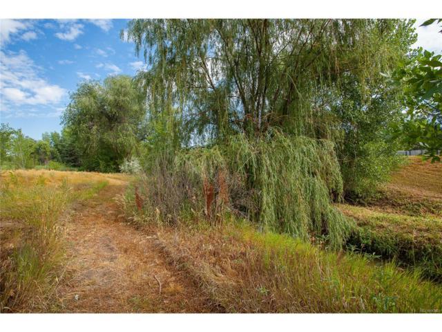 2 Alexander Lane, Greenwood Village, CO 80121 (MLS #5939883) :: 8z Real Estate