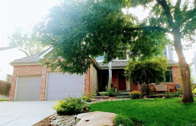 13319 Downing Street, Thornton, CO 80241 (#5942227) :: Structure CO Group