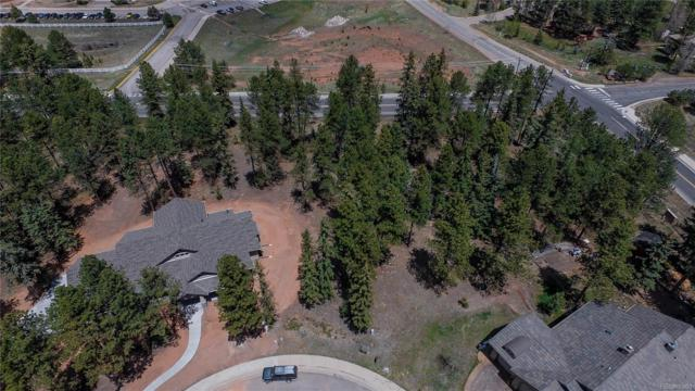 640 Chipmunk Drive, Woodland Park, CO 80863 (#5943432) :: House Hunters Colorado
