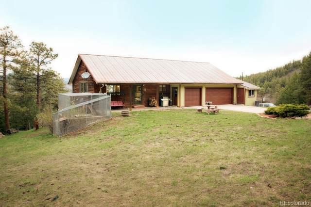 11795 Saddle Mountain Trail, Littleton, CO 80127 (MLS #5943456) :: Wheelhouse Realty