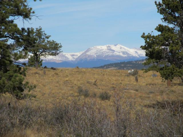 Crazy Horse Trail, Hartsel, CO 80449 (#5945353) :: Hometrackr Denver
