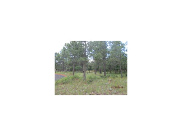 2435 Stratton Pines Point, Colorado Springs, CO 80906 (MLS #5946454) :: 8z Real Estate