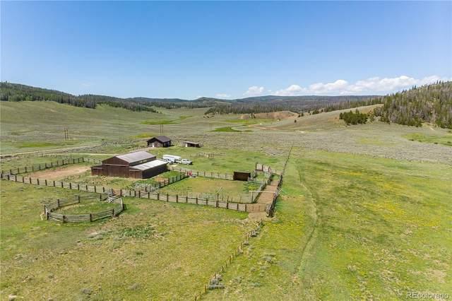 1600 County Road 117, Kremmling, CO 80459 (MLS #5948909) :: 8z Real Estate