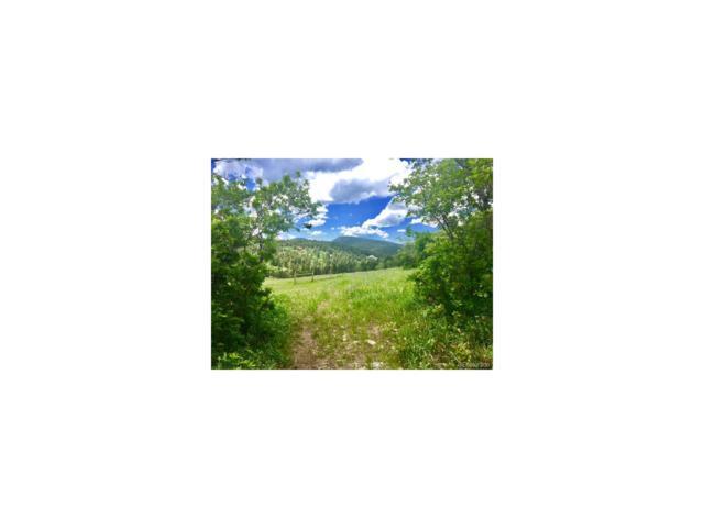 Kuehster, Littleton, CO 80127 (MLS #5951365) :: 8z Real Estate