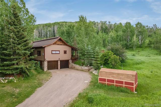 28648 Valley View Lane, Steamboat Springs, CO 80487 (#5951637) :: The DeGrood Team