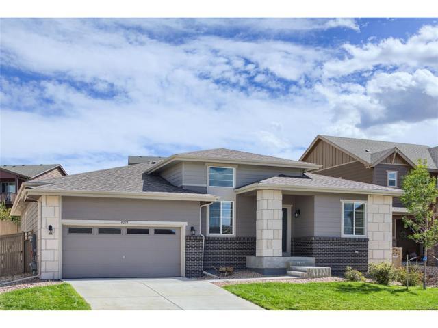 4275 Manorbrier Circle, Castle Rock, CO 80104 (#5952551) :: The Peak Properties Group