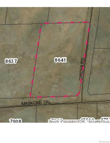 000 Maskoke Trail, Hartsel, CO 80449 (#5953564) :: The DeGrood Team