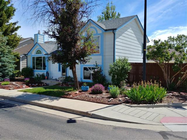 8 N Quicksilver Avenue, Castle Rock, CO 80104 (#5955323) :: The Heyl Group at Keller Williams