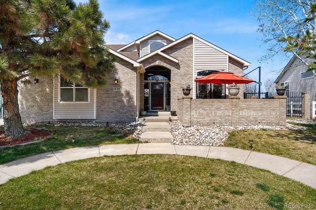 1020 Home Farm Circle, Westminster, CO 80234 (#5956361) :: The Peak Properties Group