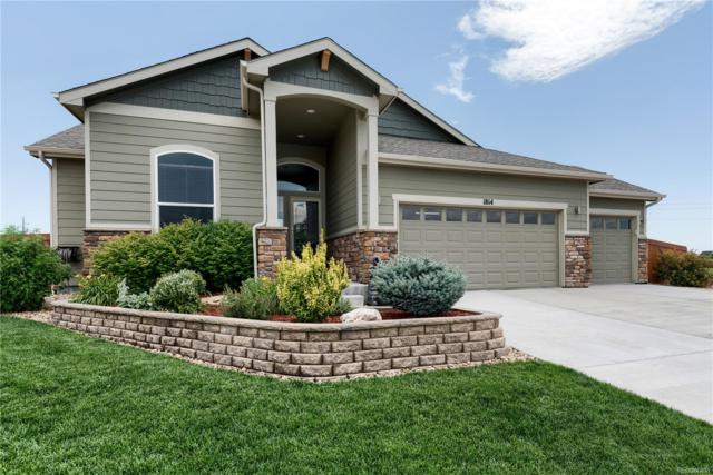 1814 Avery Plaza Street, Severance, CO 80550 (#5961213) :: The Griffith Home Team