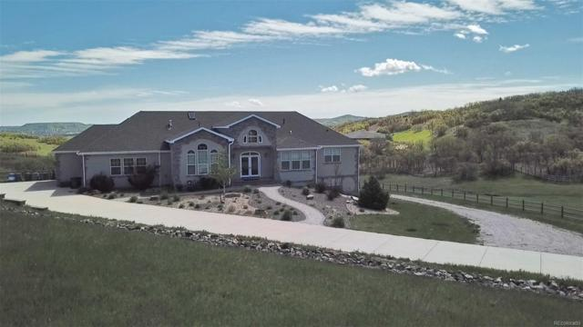 1254 Colt Circle, Castle Rock, CO 80109 (#5961383) :: The HomeSmiths Team - Keller Williams
