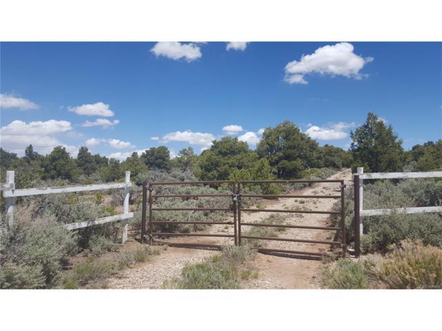 18593 Overland Way, San Luis, CO 81152 (MLS #5961972) :: 8z Real Estate