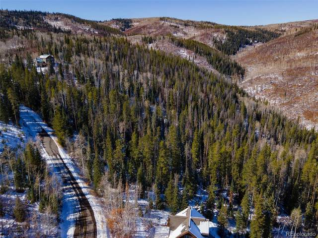 30650 Elk Lane, Steamboat Springs, CO 80487 (MLS #5965469) :: Neuhaus Real Estate, Inc.