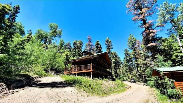 1407 Clarke Mountain Lane, Antonito, CO 81120 (#5965553) :: Venterra Real Estate LLC