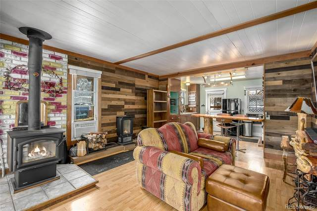 28488 Cedar Avenue, Pine, CO 80470 (#5965631) :: Berkshire Hathaway Elevated Living Real Estate